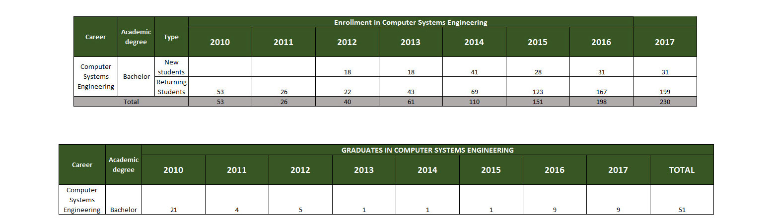 Statistical Data Computer Systems Engineering